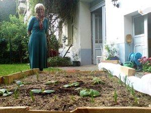 Gemüse auf einem Berliner Hinterhof
