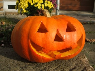 Halloween - Kürbis - Foto: olga meier-sander / pixelio.de