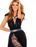 Celine Dion 2013 - Foto: (c) Alix Malka