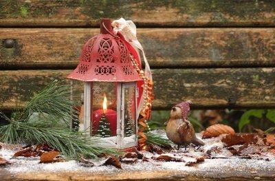 Kinder Weihnachtsbücher 2014 Weihnachtslieder Und Gedichte