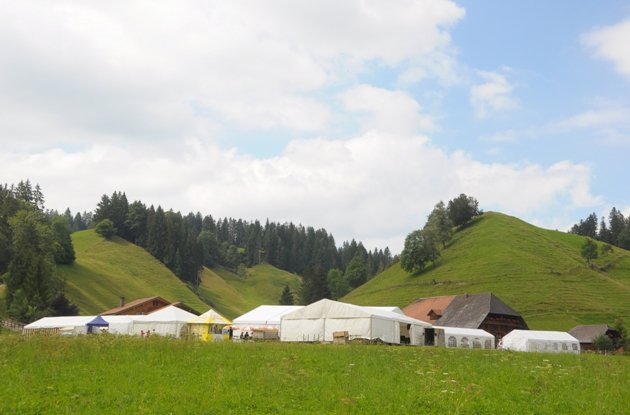 Festival-Gelände Vertanzt