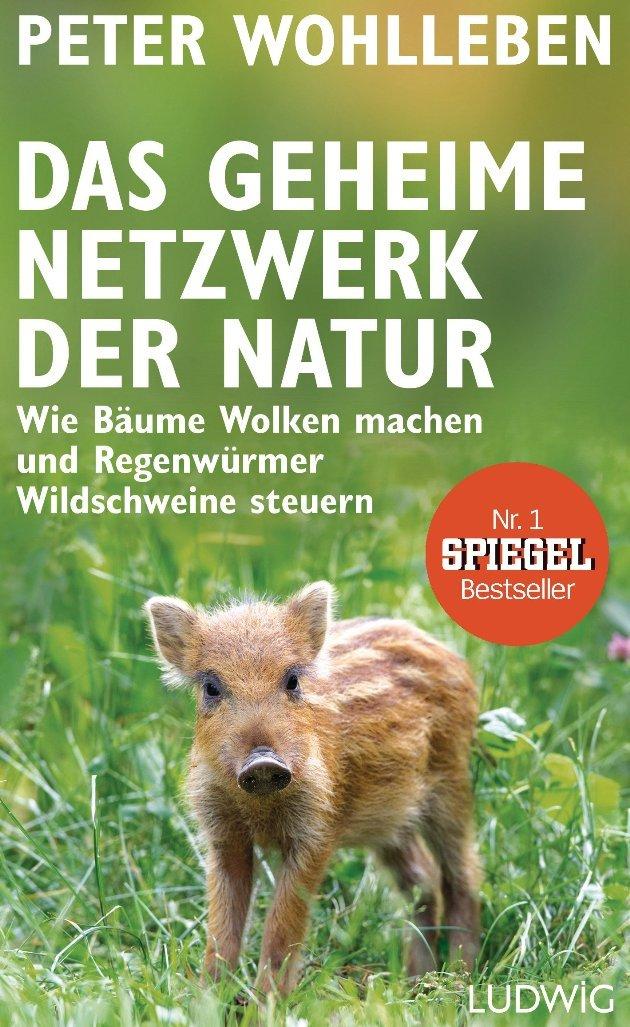 Peter Wohlleben - Buch Das geheime Netzwerk der Natur