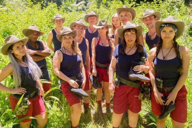 Dschungelcamp 2018 - Einschaltquoten und andere Statistik