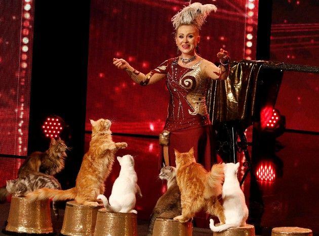 Anelya Roslyakova mit ihren Katzen beim Supertalent am 20.10.2018