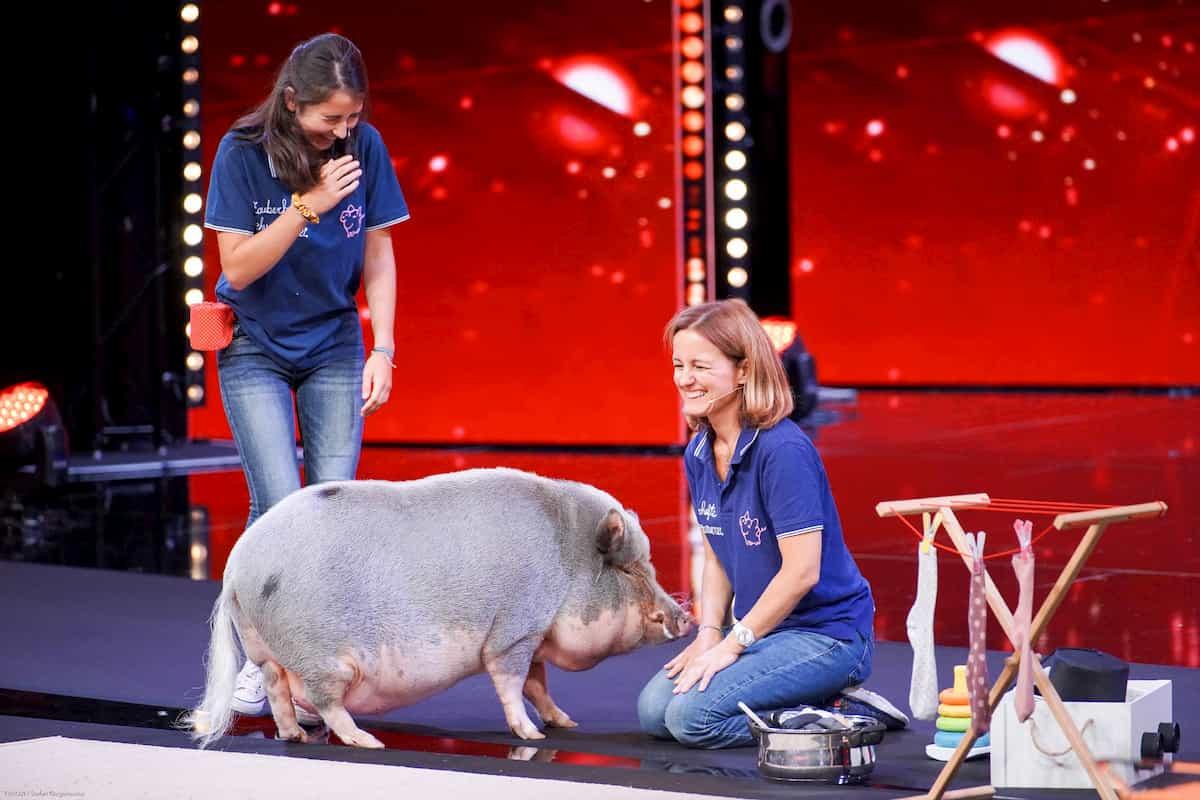 Schwein Idefix, Henriette und Julia - beim Supertalent am 14.12.2019