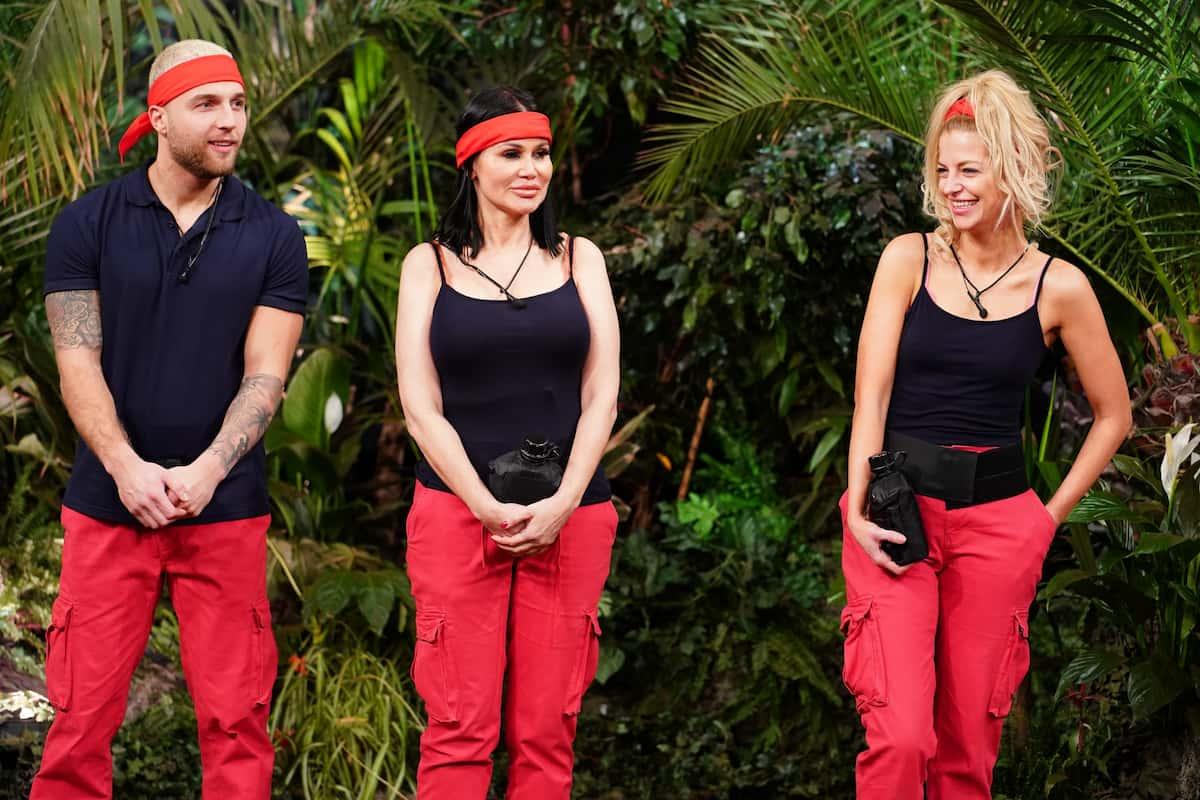 Dschungelshow 2021 - ab 24.1.2021 im Tiny Houxe Filip Pavlovic, Djamila Rowe und Xenia von Sachsen