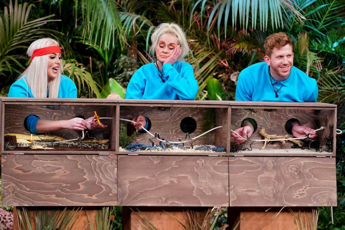 Lydia Kelovitz, Bea Fiedler und Lars Tönsfeuerborn in der Prüfung zur Dschungelshow am 18.1.2021